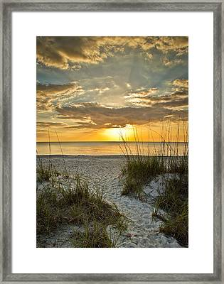 Park Shore Sunset Framed Print