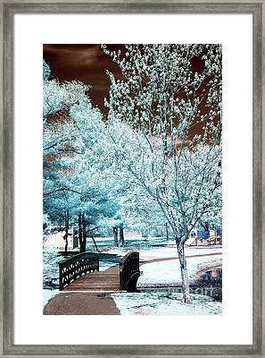 Park Walk In South River Framed Print by John Rizzuto