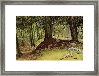 Parkhurst Woods Framed Print by Richard Redgrave