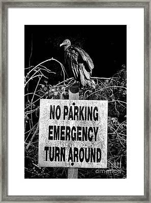 Parking Enforcement Framed Print by Olivier Le Queinec