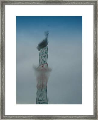 Parking Framed Print by Phil Rodriguez
