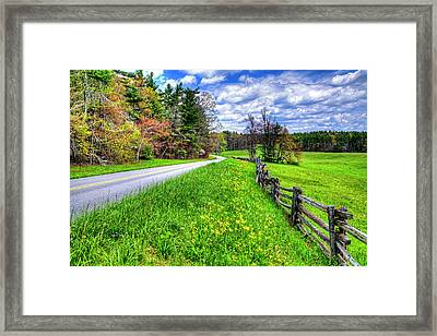 Parkway Spring Framed Print by Dale R Carlson