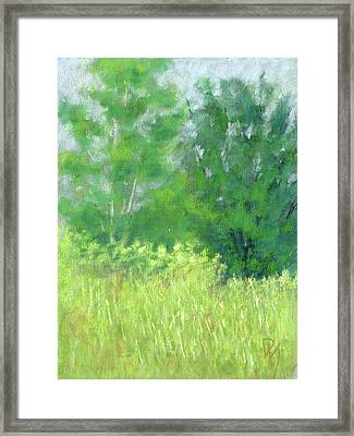 Parkway Trees Framed Print by David King