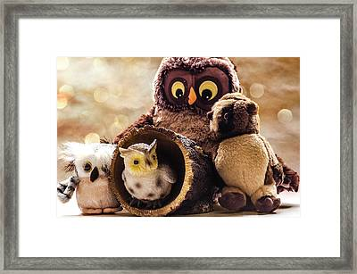 Parliament Of Owls Framed Print