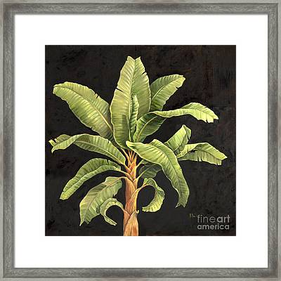 Parlor Palm II Framed Print