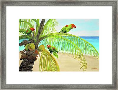 Parrot Beach Framed Print