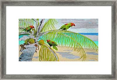Parrot Beach On Wood Framed Print by Ken Figurski