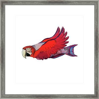 Parrot-fish Framed Print