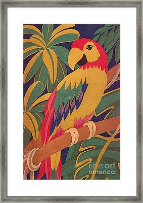 Parrot Framed Print by Lucyna A M Green