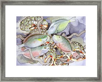 Parrot Play Framed Print