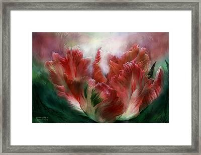 Parrot Tulip 3 Framed Print by Carol Cavalaris