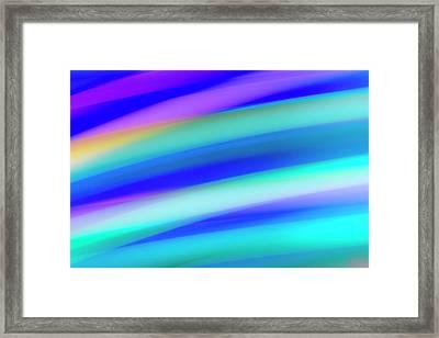 Parrotfish No. 2 Framed Print