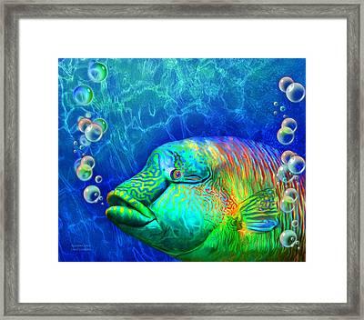 Parrotfish - Rainbow Spirit Framed Print