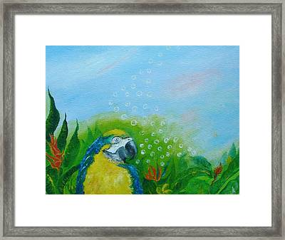 Parrothead Wakes Up In Margaritaville Framed Print by Phyllis OShields