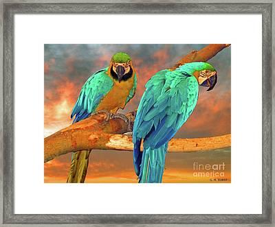 Parrots At Sunset Framed Print