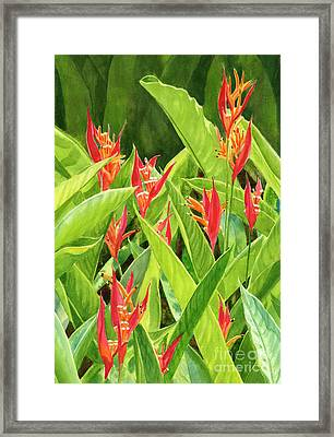 Parrots Flower With Background Framed Print