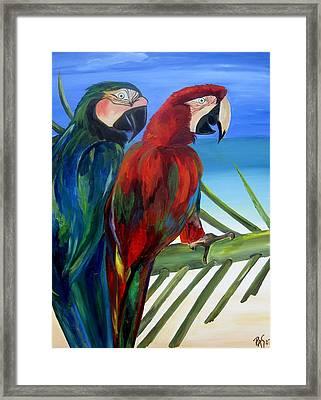 Parrots On The Beach Framed Print by Patti Schermerhorn