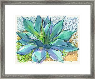 Parrys Agave Framed Print