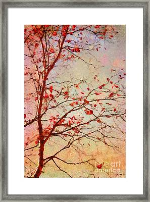 Parsi-parla - D04c03t01 Framed Print by Variance Collections