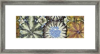 Parsimony Being Flowers  Id 16164-225432-49520 Framed Print