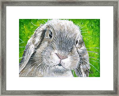 Parsnip Framed Print by Mary-Lee Sanders