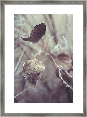 Part Of Translucent Reality. Vertical Framed Print