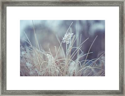 Part Of Translucent Reality. Visual Poem Framed Print