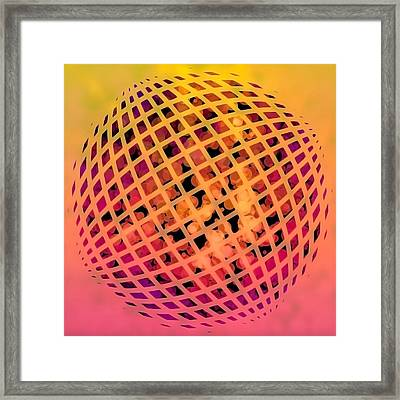 Particle Zoo Framed Print