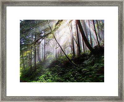 Parting Of The Mist Framed Print