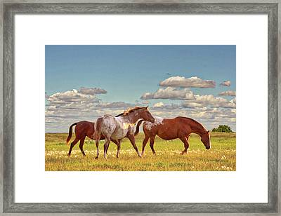 Party Of Three Framed Print