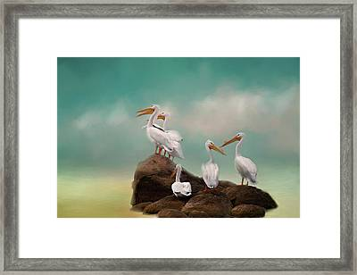 Party On The Rocks Framed Print