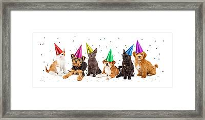 Party Puppies And Kittens With Confetti Framed Print
