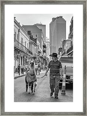 Party Time Bw Framed Print