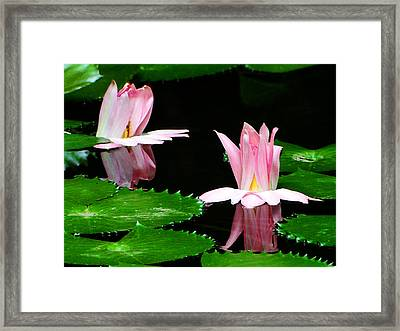 Framed Print featuring the photograph Pasionate Glow by Blair Wainman