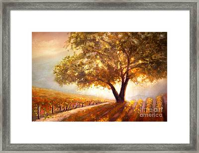 Paso Robles Golden Oak Framed Print