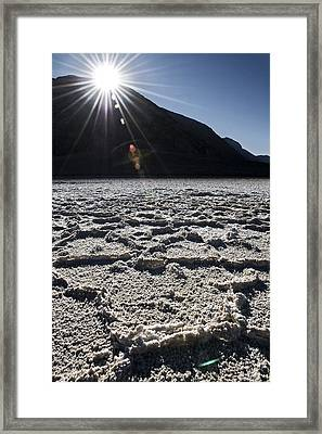 Pass The Pepper Framed Print by Mike McMurray