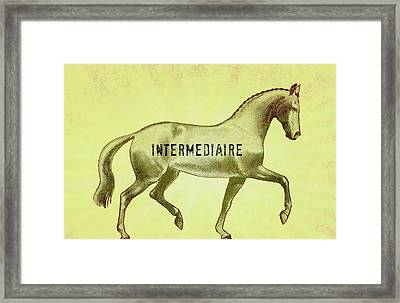 Passage Intermediaire Framed Print by JAMART Photography