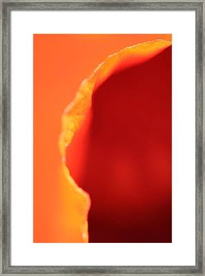 Passages Framed Print by Don Ziegler