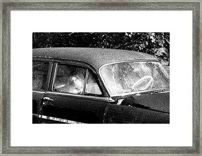 Passenger Framed Print by David Lee Thompson