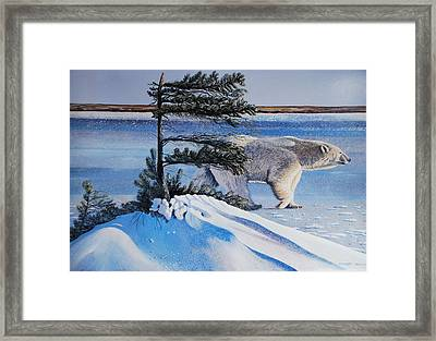 Passing By  Polar Bear Framed Print