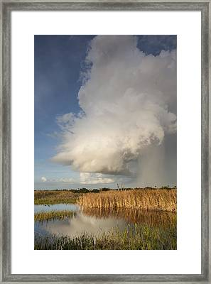 Passing Late Afternoon Rain Shower Framed Print