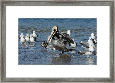 Framed Print featuring the photograph Passing Through by Fraida Gutovich