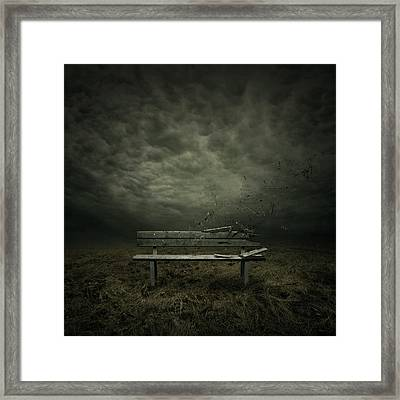 Passing Framed Print by Zoltan Toth