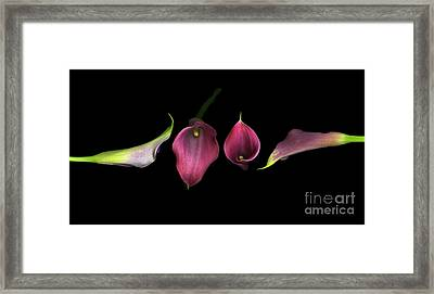 Passion Framed Print by Christian Slanec
