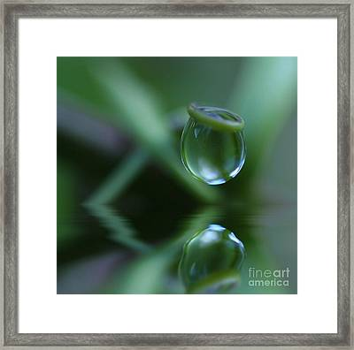 Passion Drop Framed Print