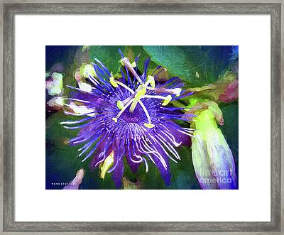 Passion Flower Framed Print by Mona Stut