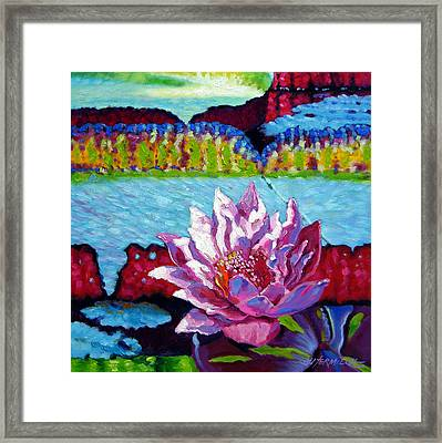 Passion For Light And Color Framed Print by John Lautermilch