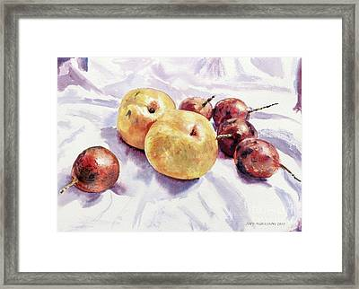 Passion Fruits And Pears Framed Print by Joey Agbayani