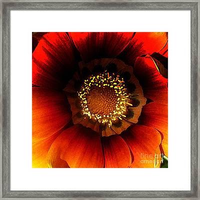 Passion Framed Print by JoAnn SkyWatcher