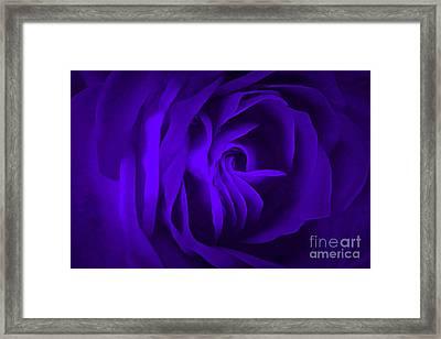 Passion Purple Framed Print